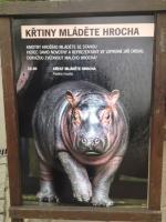 podium zvuk Zoo Praha